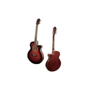 Chitarra acustica Maxine STV177